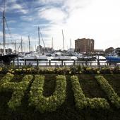 Hull Marina and Fruit Market