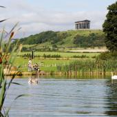 Penshaw Monument & Herrington Country Park
