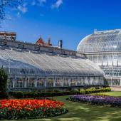 Botanical Gardens & Tropical Ravine