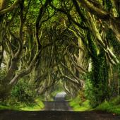 Game of Thrones Tours and Experiences